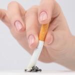Les cigarettes de contrebande passées au microscope