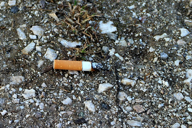 amende pour les mégots de cigarettes