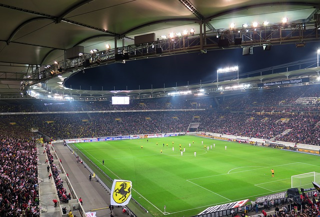 Euro 2016 : le vapotage interdit