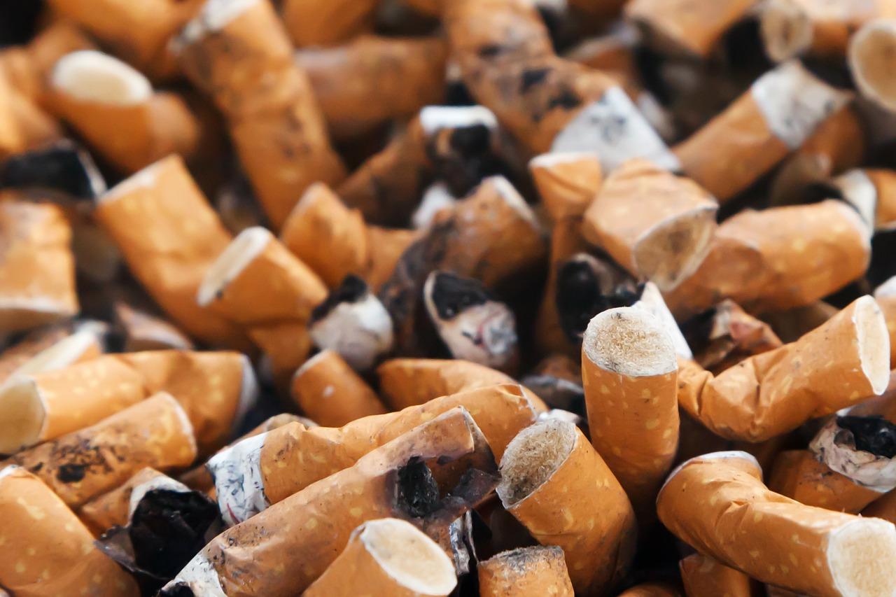 la cigarette désormais interdite dans les jardins et parcs publics