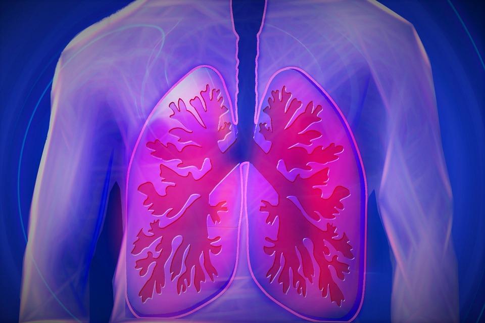 De meilleures capacités respiratoires